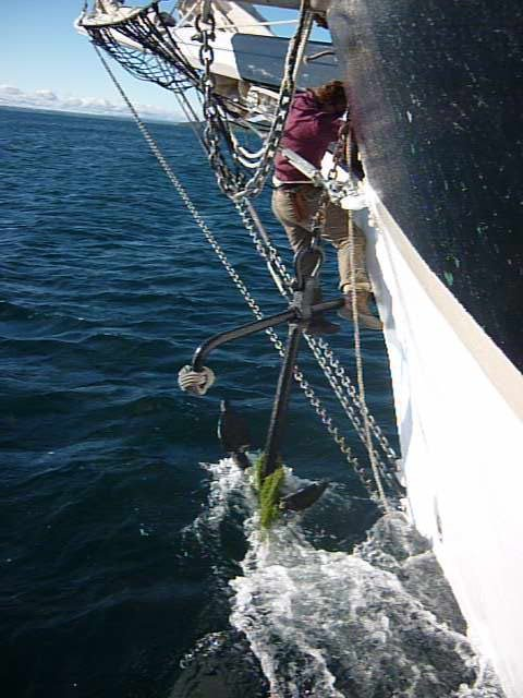 Cheyenne goes over the rail to guide the anchor
