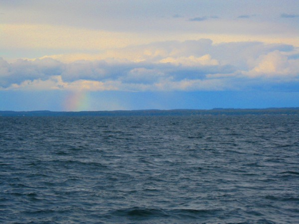 Rainbow spotted in the late afternoon