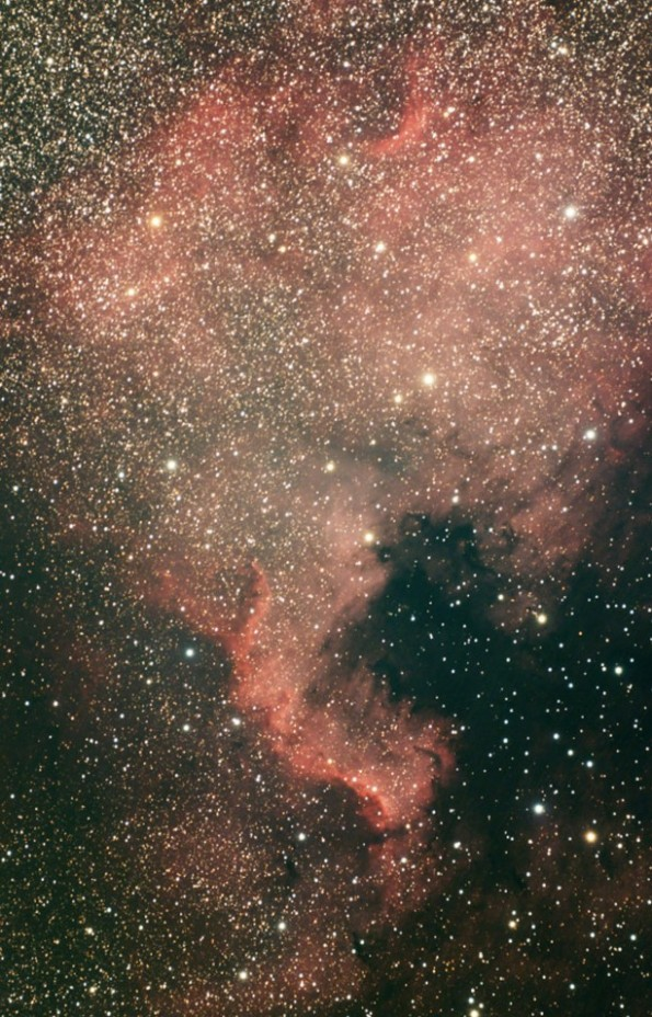 Better view of the North American Nebula taken by Scott Anttila.
