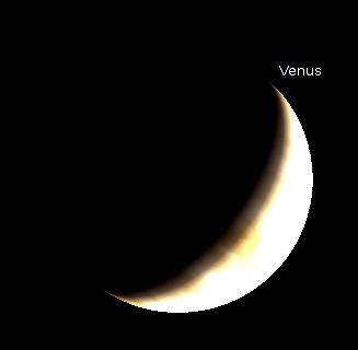 Venus in a telescope