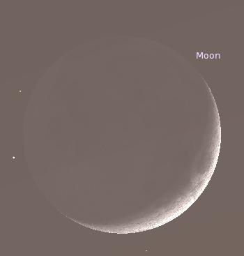 The Moon through Binoculars