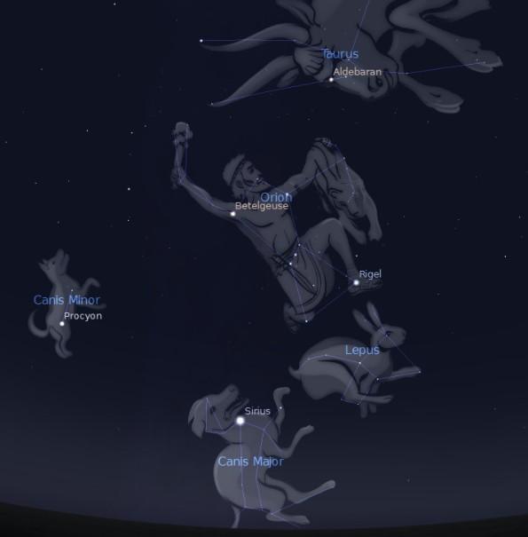 Orion Entourage