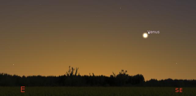 Venus in the a.m.