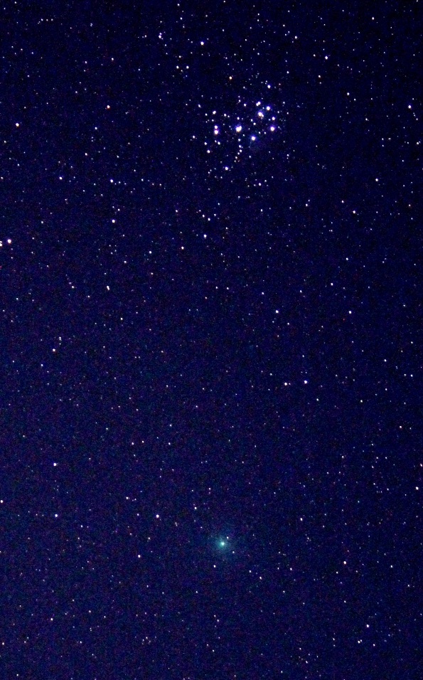 Comet Wirtanen and the Pleiades