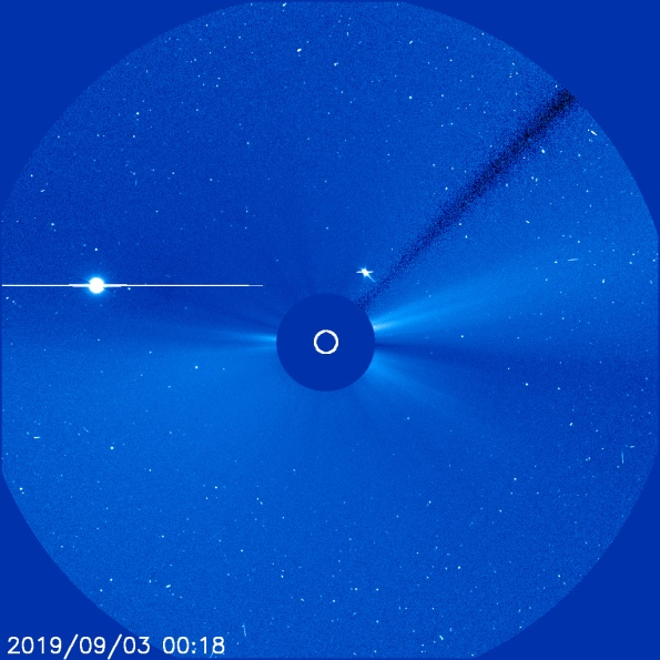 Venus and Mercury in the C2 coronagraph