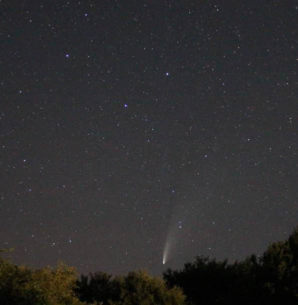Photograph of Comet NEOWISE