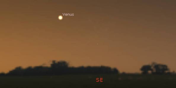 Venus in the morning twilight